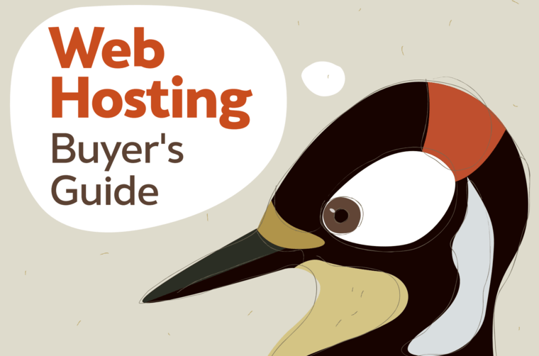 Web Hosting Buyer's Guide.