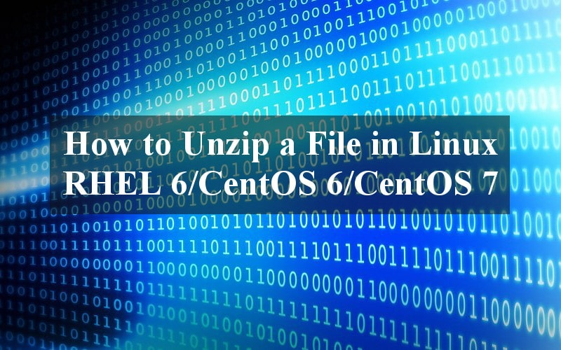 How to Unzip a File in Linux