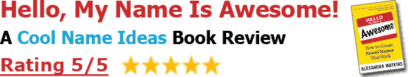 Hello, My Name is Awesome - Book Review